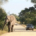 SANParks permits self-drive excursions for day visitors