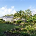 Put Mauritius top of your post-Covid-19 travel list: Touring the Aubergine Garden at LUX* Belle Mare