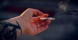 Webinar: Don't blame SA's booming illegal cigarette trade on lockdown alone