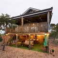 Treedom along the Garden Route ticks all the right travel trend boxes