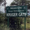 Kruger opens some of its camps