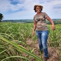 Tongaat Hulett celebrates women in sugar cane farming