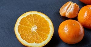 New technology addresses alternate bearing in citrus