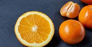 New technology addresses alternate bearing in citrus