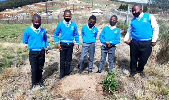 Sinevuso High School pupils showing off their pepperbark trees.