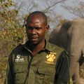 African organisations join TUSK in fundraising effort to protect wildlife
