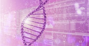 Heritable genome editing not yet ready to be tried safely and effectively in humans