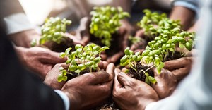 Building back better on food and agriculture