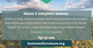Sappi signs up to Business for Nature's ambitious call to action