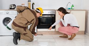 5 things to consider when searching for a pest control company in South Africa