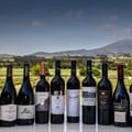 Absa Top 10 Pinotage winners announced