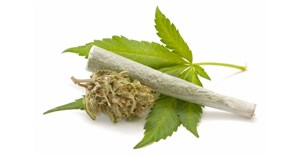 Submissions on Cannabis Bill extended