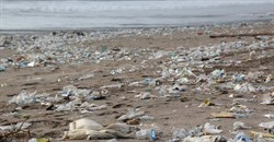 Why microplastics found in Nigeria's freshwaters raise a red flag