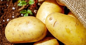 New campaign to highlight the versatility of potatoes
