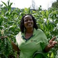 Meet the South Africans fighting food insecurity from the ground up
