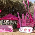 Scan Display supports PinkDrive with outdoor branding