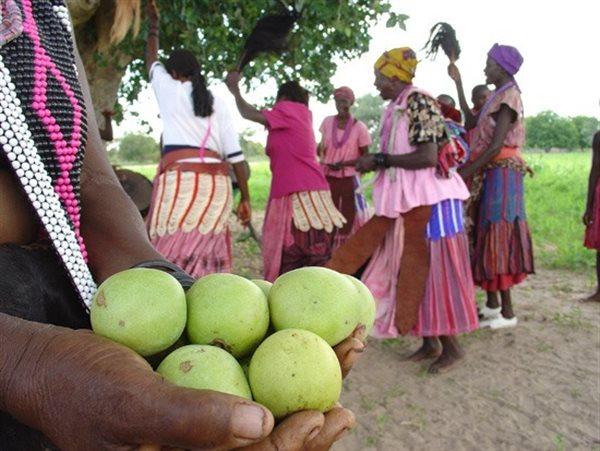 Eudafano Women's Co-operative in Namibia