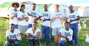 Checkers deal with Farmer Angus Eggs boosts black-owned regenerative agriculture