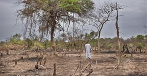 Climate change, migration and urbanisation: patterns in Sub-Saharan Africa