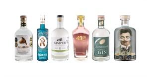 2020 SA Craft Gin Award-winners announced