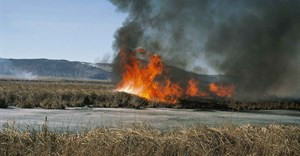 Pick n Pay donates R100,000 to help farmers affected by recent veld fires