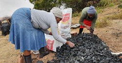 Eco-friendly charcoal production to boost SA's water security