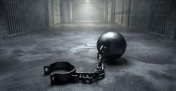 Government investigating Bushiris' escape