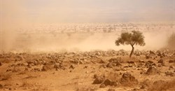 Africa must be at the heart of climate negotiations