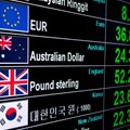 The forex roller coaster rider isn't over yet