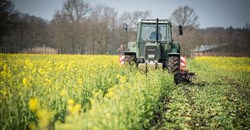 Global agriculture trade remains steady through pandemic