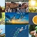 #BestofBiz 2020: Agriculture