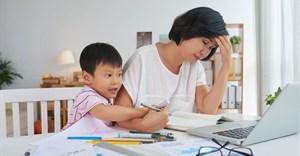 Survey provides insight into struggles of remote workforce