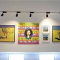 Jaffer Modern art gallery now open to the public