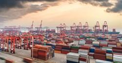 Transport, freight industry needs urgent government intervention