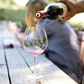 Vinpro raises concerns about consequences of alcohol ban for SA wine industry