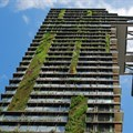 Green buildings can bring fresh air to design, but they can also bring pests