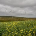Excelsior Wind Farm