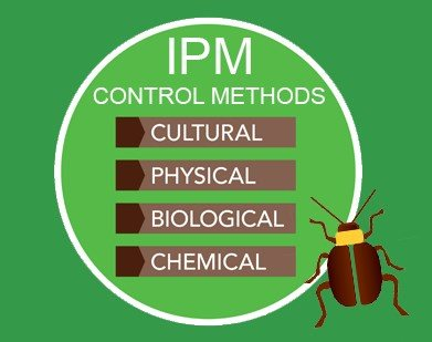 Reducing the chemical footprint of your pest control methods