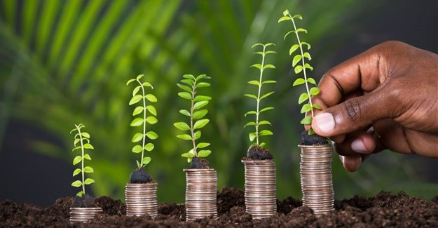 Revisions to Crisa align with growing interest in ESG investment