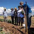 SA's first organic pollinator programme launched