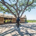 Mdluli Safari Lodge achieves AA+ investment grade rating
