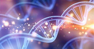 Any man-made changes to the human genome must be carefully regulated. Billon Photos/Shutterstock