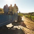 Safeguarding the well-being of SA's agricultural workers