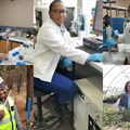 Celebrating International Day of Women in Science at Sappi