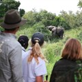 10 reasons why a family safari is one of the best escapes from Covid-19 right now