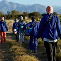 SA agricultural employment down 8% year-on-year in Q4