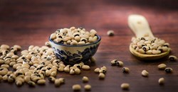 A new way of processing cowpeas brings affordable nutrition to children