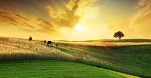Government needs to remove restrictive regulations to allow the agricultural sector to grow