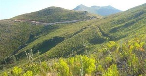 The Inyanda-Roodeplaat wind farm site in the Eastern Cape, taken from the cover of an Environmental Impact Report.