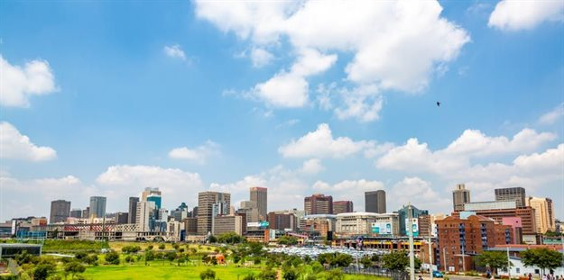 In South Africa, there are more streets named after non-native plant species than native plant species. Image: Shutterstock